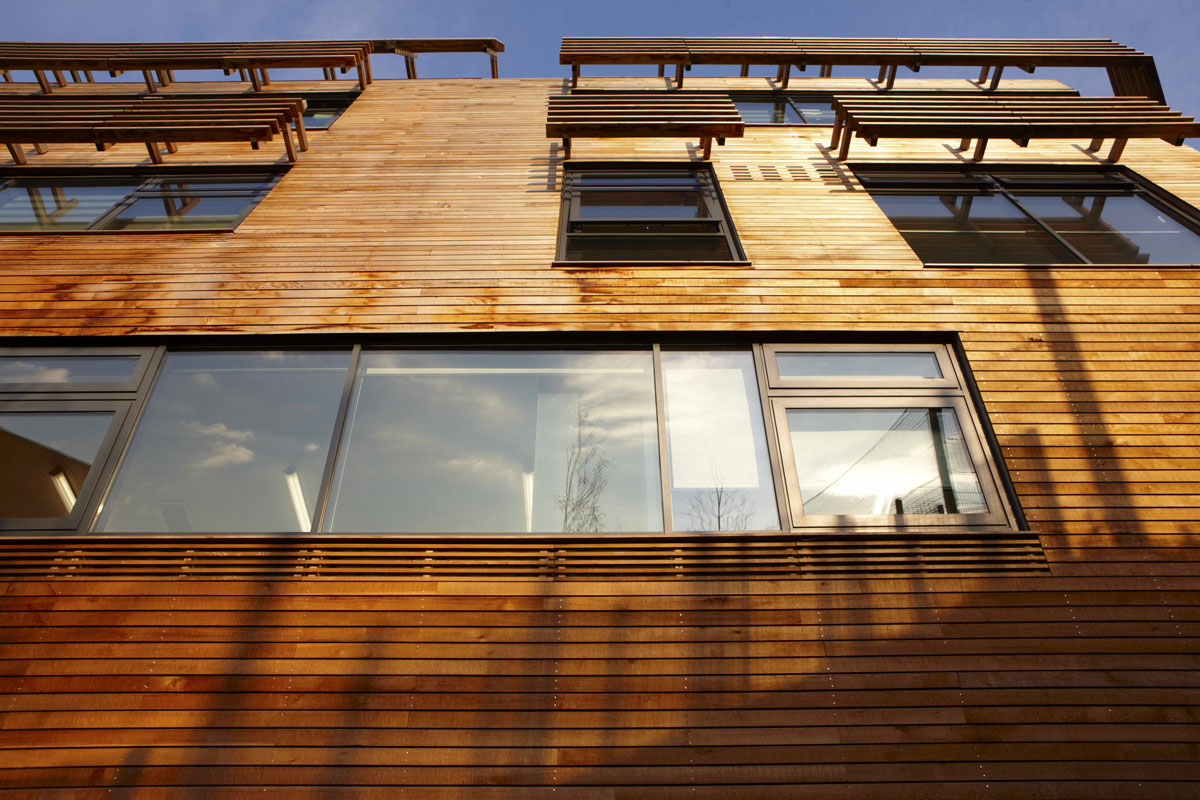 Bridge Academy timber cladding, Hackney | London Architecture Photographer
