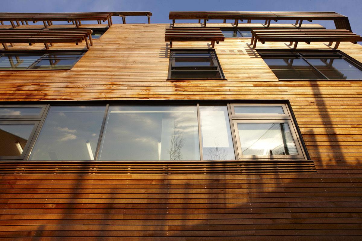 Bridge Academy timber cladding, Hackney | London Architecture Photographer