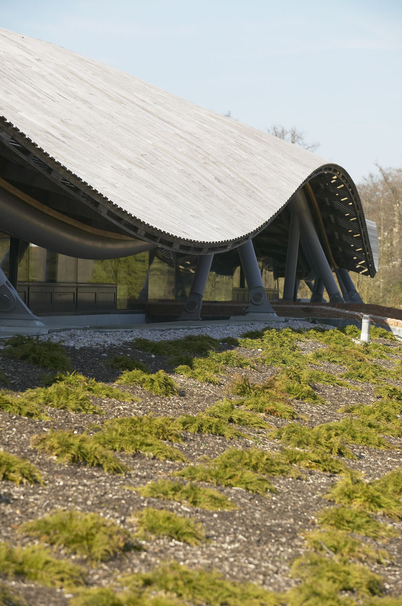 Savill Building Roof Curvature Detail, Savill Garden, Windsor Great Park | Architecture Photographers